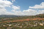 Samaria, Settlment Shiloh (right) overlooking Shiloh valley with palestinian village Turmus Ayya in the background
