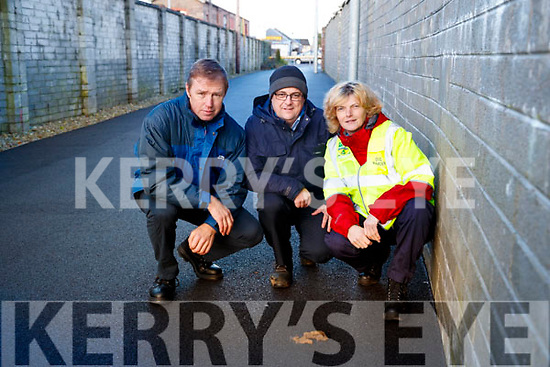 Pat Healy (Dog Warden) Brendan Murphy (Litter Warden) and Mired Moore (Dog Warden) are looking for people to clean up after their dogs.