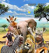 Howard, SELFIES, paintings+++++,GBHR881C,#Selfies#, EVERYDAY ,elephants