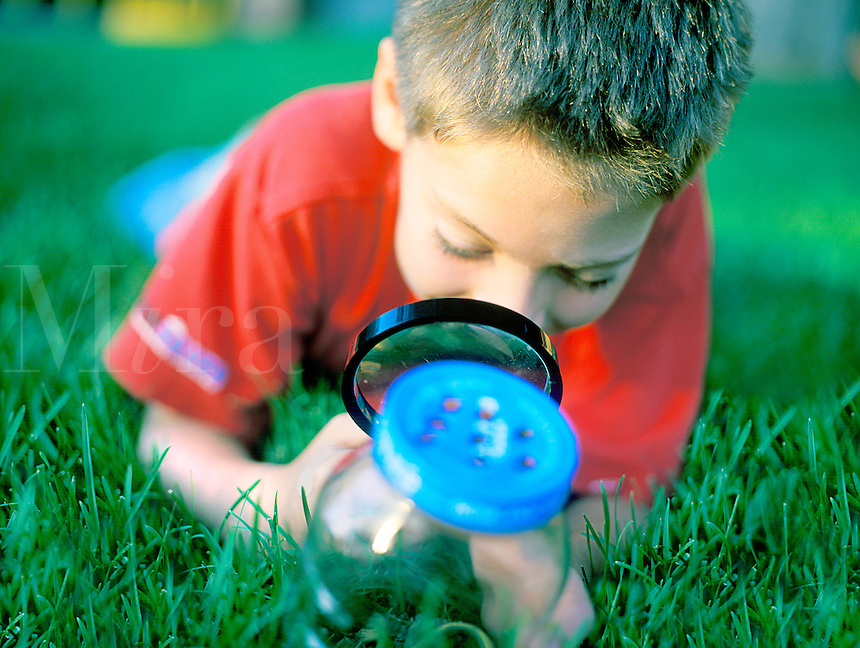 Young boy with looking at bugs in a bottle with magnifying glass