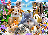 Howard, SELFIES, paintings+++++,GBHR948,#selfies#, EVERYDAY ,puzzle,puzzles