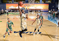 FIU Men's Basketball v. USF (12/18/18)