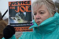 Mary Najdzion, of Chatham raises a Justice for Joe poster during a protest rally outside the Provincial Court Building.