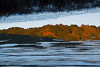 """""""RUSH INTO EVENING""""<br /> <br /> (1) 42 X 30 canvas print $3,500<br /> (1) 36 X 24 canvas print $2,800<br /> <br /> 16 x 12.5 signed paper print<br /> 1/50 $95.00<br /> <br /> <br /> <br /> <br /> Winter evening at Rush Creek Park Marin County California"""