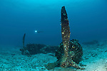 WWII plane wreck underwater with diver.