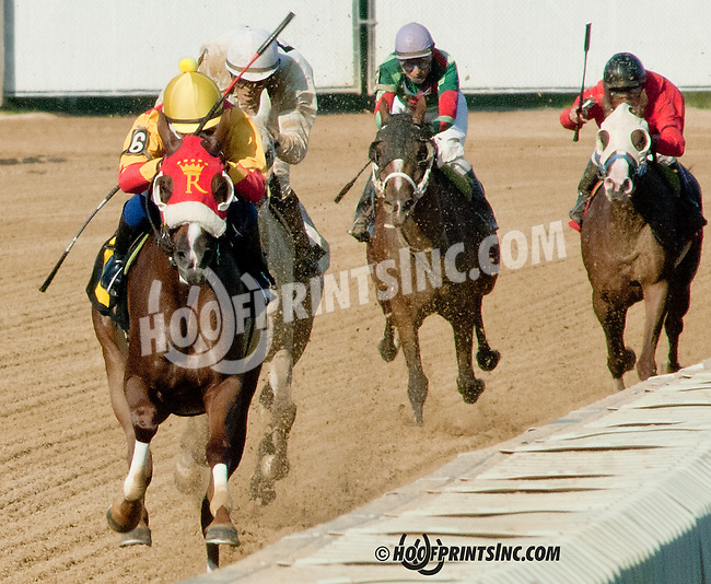 RB Burn Baby Burn winning  at Delaware Park on 8/10/13