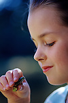 Green tree frog being held by young girl at park Lake Pleasant Bothell Washington State USA.