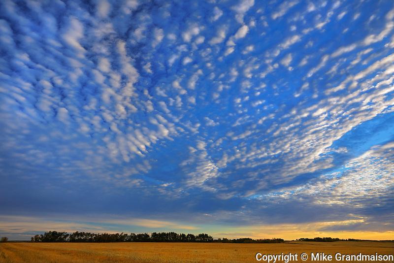 Clouds <br /> Lepine<br /> Saskatchewan<br /> Canada