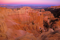 Hoodoos in Bryce Canyon National Park, Utah, USA