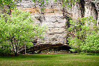Sandfield Buff at the group camping area in the Blanchard Springs Recreation Area is one of the hightest bluffs in the Ozarks.