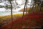 Pictured Rocks Miner's Beach Autumn