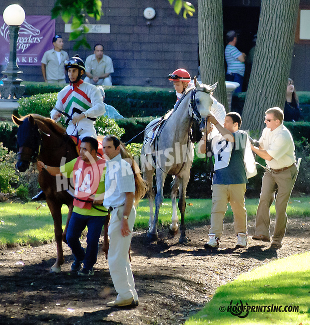 RB So Rich before The Delaware Park Arabian Juvenile Championship (grade 3) at Delaware Park on 9/27/14