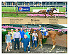 Disarm winning at Delaware Park on 7/27/15