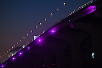 Purple Bridges