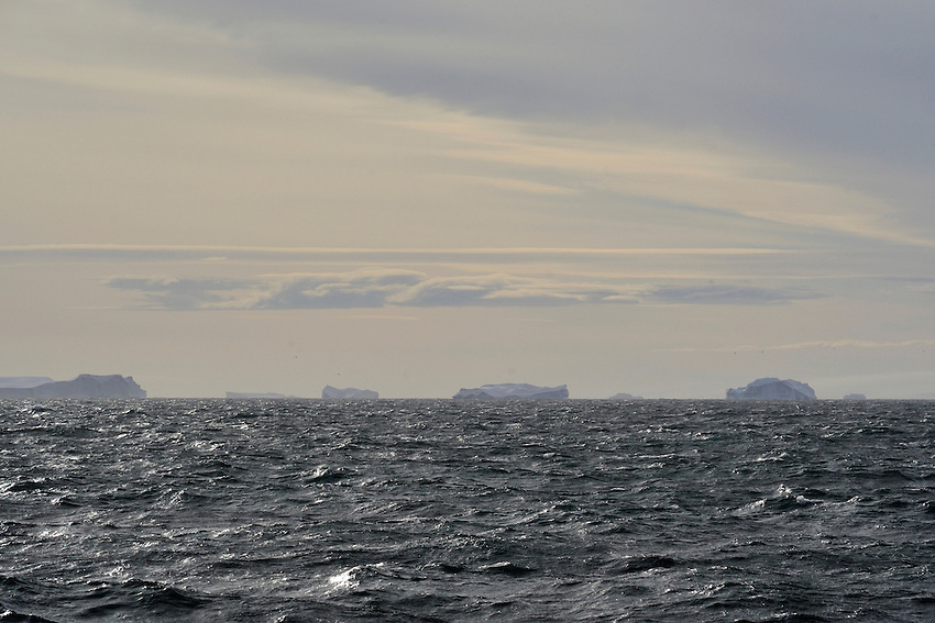 The Fleet's In - Icebergs in the Great Southern Ocean
