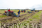 The ploughing championships in Causeway on Sunday.