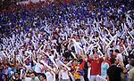 FUDBAL, BEOGRAD, 06.06.2009. -   Navijaci Srbije. Fudbalska reprezentacija Srbije u 6. kolu kvalifikacija za Svetsko prvenstvo 2010. godine u Juznoj Africi pobedila je Austriju rezultatom 1:0. Foto: Nenad Negovanovic - Sportska centrala
