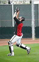 Alex Avila - Arizona Diamondbacks 2018 spring training (Bill Mitchell)