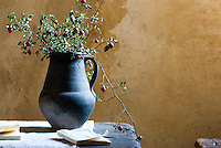 Rosehips in a terracota jug create a simple still life against the raw plaster wall of the living room