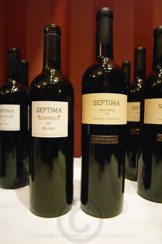 Bottles of Septima Mendoza 2004 Malbec, and Reserva 2002 from Codorniu Mendoza. The Oviedo Restaurant, Buenos Aires Argentina, South America