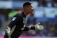 Cardiff City's Neil Etheridge during the game <br /> <br /> Photographer Ian Cook/CameraSport<br /> <br /> The EFL Sky Bet Championship - Swansea City v Cardiff City - Sunday 27th October 2019 - Liberty Stadium - Swansea<br /> <br /> World Copyright © 2019 CameraSport. All rights reserved. 43 Linden Ave. Countesthorpe. Leicester. England. LE8 5PG - Tel: +44 (0) 116 277 4147 - admin@camerasport.com - www.camerasport.com