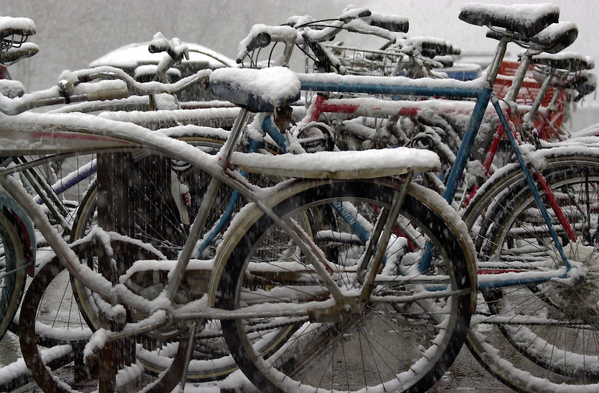 February 2002: A rack full of bikes during an unexpected snowstorm.