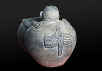 Effigy vase with 2 linked containers, now masculine where the liquid enters the vessels, and the other feminine, with decorative figures, Chicoide style, Taino culture, Precolumbian era, in the Museo del Hombre Dominicano, founded in 1973 and designed by Jose Antonio Caro Alvarez, on the Plaza de la Cultura in the Colonial Zone, in Santo Domingo, capital of the Dominican Republic, in the Caribbean. The museum houses collections on the culture of the Precolumbian Taino people. Santo Domingo's Colonial Zone is listed as a UNESCO World Heritage Site. Picture by Manuel Cohen