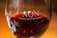 A glass of red wine, engraved with the name of the winery. Bodega NQN Winery, Vinedos de la Patagonia, Neuquen, Patagonia, Argentina, South America
