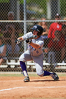 New York University Violets center fielder Jack Walter (8) squares to bunt during a game against the Edgewood Eagles on March 14, 2017 at Terry Park in Fort Myers, Florida.  NYU defeated Edgewood 12-7.  (Mike Janes/Four Seam Images)