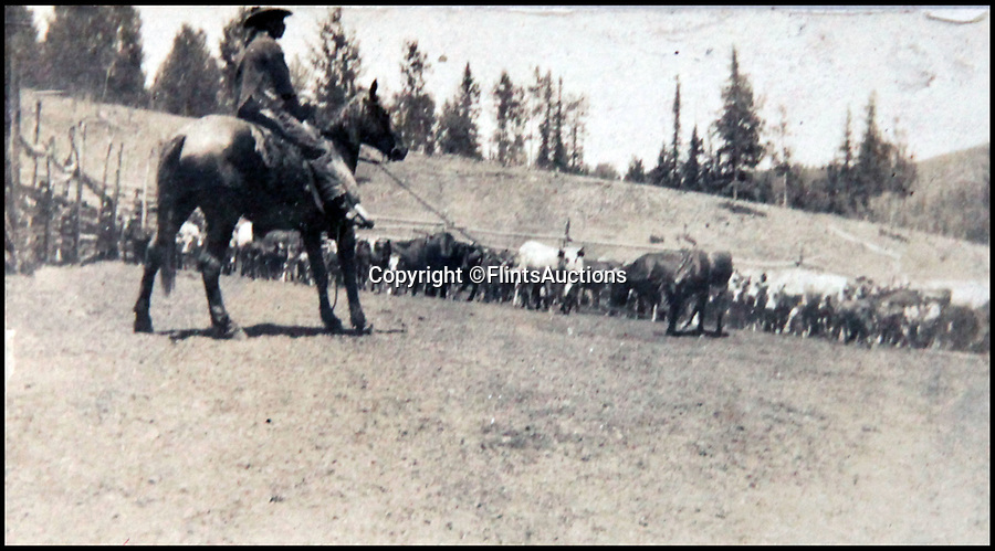BNPS.co.uk (01202 558833)<br /> Pic: FlintsAuctions/BNPS<br /> <br /> Out on the range...<br /> <br /> Unseen album reveals the life of a cowboy in the real wild west...<br /> <br /> Fascinating previously unseen early photos of cowboys in the Wild West have come to light 130 years later.<br /> <br /> They show life on the ranches of Colorado and New Mexico in the vast expanses of the south west US in the 1880s.<br /> <br /> One dramatic image captures the thrilling moment a group of cowboys ride towards the camera with hats held aloft.<br /> <br /> The photos are thought to have been taken by a British farmhand who travelled Stateside in the late 19th century to earn a living.