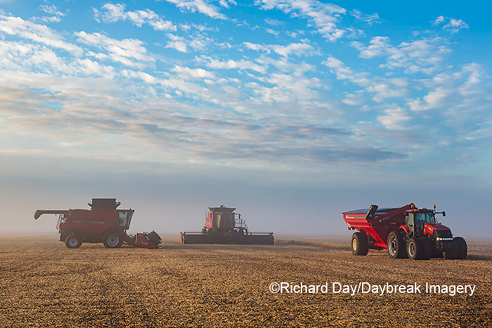 63801-08101 Case IH combines and tractor in field on foggy morning Marion Co. IL