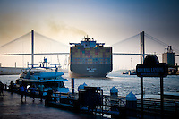 MSC Lucy container ship going under Talmadge Memorial Bridge in Savannah, GA