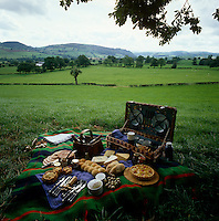 A picnic lunch is spread out beneath a tree with views across the rolling fields and hills beyond