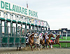 A Ladys Man winning The Delaware Park Arabian Juvenile Championship at Delaware Park on 10/26/09