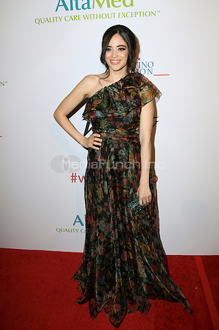 BEVERLY HILLS, CA - MAY 12: Edy Ganem attends the AltaMed Power Up, We Are The Future Gala at the Beverly Wilshire Four Seasons Hotel on May 12, 2016 in Beverly Hills, California. Credit: Parisa/MediaPunch.