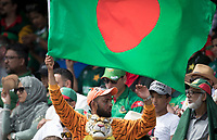 Bangladesh fan dressed for the occasion during Pakistan vs Bangladesh, ICC World Cup Cricket at Lord's Cricket Ground on 5th July 2019