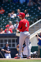 Springfield Cardinals infielder Evan Mendoza (4) steps to the plate for an at-bat on May 19, 2019, at Arvest Ballpark in Springdale, Arkansas. (Jason Ivester/Four Seam Images)