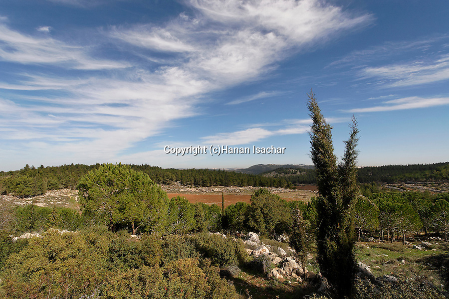 Israel, Jerusalem Mountains. Scenery at Begin Park