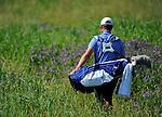 2011 M DII Golf