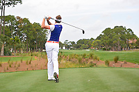 Ian Poulter (ENG) 2/15