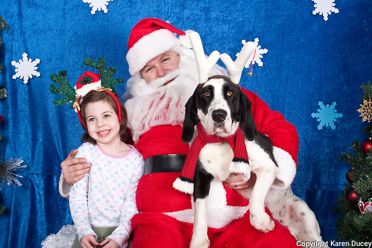 Digger and Keri's daughter are photographed with Santa at a fundraiser for Dogs Deserve Better at Pet Pros in Redmond, WA on December 12, 2010. (photo by Karen Ducey)