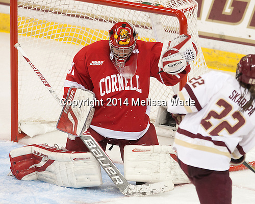 Paula Voorheis (Cornell - 31) - The Boston College Eagles defeated the visiting Cornell University Big Red 6-2 on Friday, October 24, 2014, at Kelley Rink in Conte Forum in Chestnut Hill, Massachusetts.