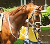 Ocala Rush at Delaware Park on 5/30/15