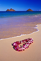 A beautiful orchid lei gently settles on the warm sands of Lanikai beach,Oahu. Mokulua islands in background.