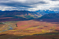 Autumn colors red and orange dwarf birch dominate the tundra overlooking the savage river, Denali National Park, interior, Alaska.