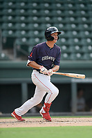 Left fielder Tyler Dearden (24) of the Greenville Drive bats in a game against the Delmarva Shorebirds on Friday, August 2, 2019, in the continuation of rain-shortened game begun August 1, at Fluor Field at the West End in Greenville, South Carolina. Delmarva won, 8-5. (Tom Priddy/Four Seam Images)