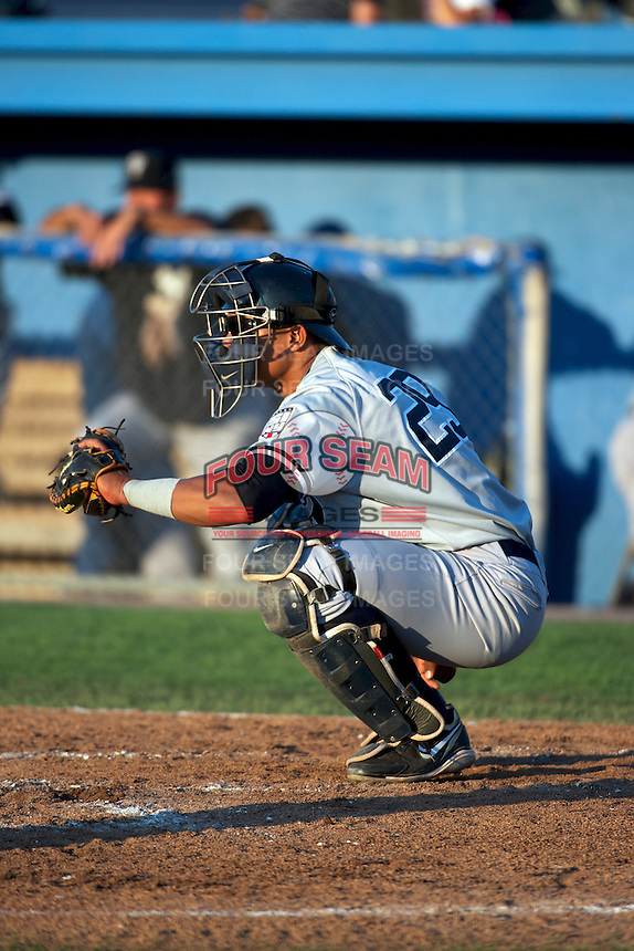 Staten Island Yankees catcher Isaias Tejeda #29 warms up the pitcher during a game against the Batavia Muckdogs at Dwyer Stadium on July 30, 2012 in Batavia, New York.  Batavia defeated Staten Island 5-4 in 11 innings.  (Mike Janes/Four Seam Images)