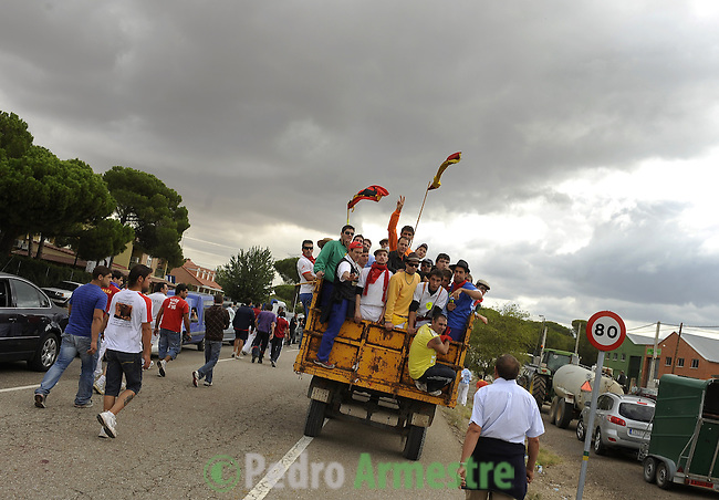 Men stand on the truck that carries the dead bull during the bull of the plain 'Toro de la Vega' festival, on September 15, 2009 in Tordesillas. The festival is one of the oldest in Spain with roots dating back to the fifteenth century. The bull has to be enticed across the river from the village to the plain 'Vega' before it can be killed to honour the 'Virgen de la Pena'.  © Pedro ARMESTRE.