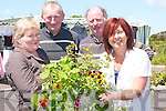 "MARKET DAY: Buying some of the plants at ""The Farmers Market Day"" at Tintean Car Park, Ballybunion, on Sunday, l-r: Noreen and Paddy Kennelly (Ballylongford), Jim Collins (Athea) and Dee Keogh (Ballybunion).."