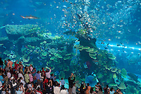 United Arab Emirates, Dubai: Dubai Mall, worlds largest shopping mall, The Aquarium